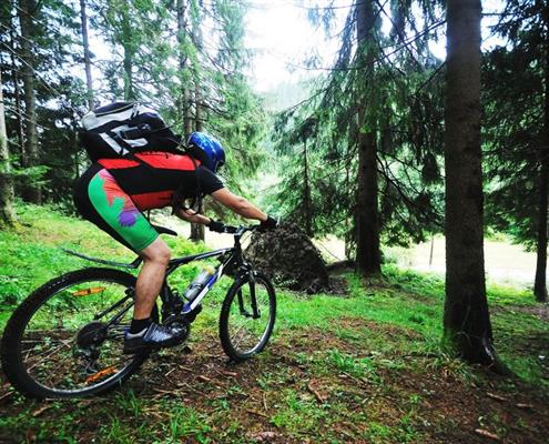 Mountain bike in Carnia